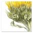 prints-sunflower